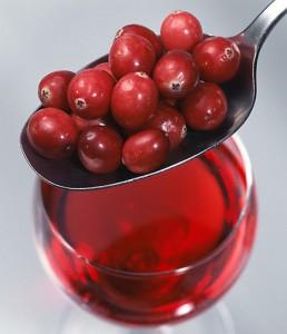 La cranberry: une baie antioxyadnte de santé
