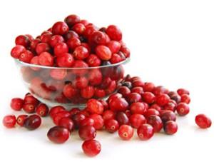La cranberry bio un antioxydant naturel puissant